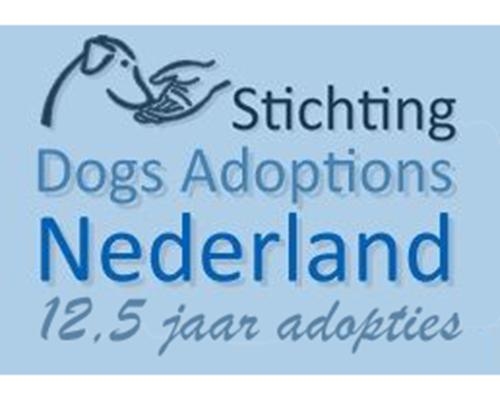 dog adoptions nederland